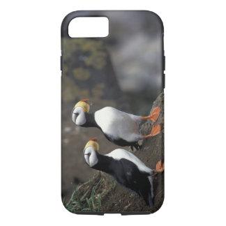 Coque iPhone 8/7 Na, Etats-Unis, Alaska, mer de Béring, Pribilofs,