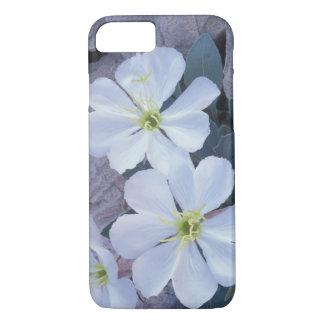 Coque iPhone 8/7 Na, Etats-Unis, Utah, arque le NP, oenothère