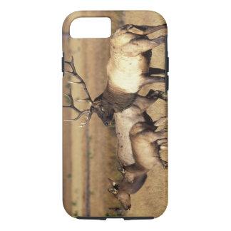 Coque iPhone 8/7 Na, parc national des Etats-Unis, Wyoming,