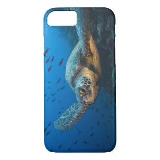 Coque iPhone 8/7 Noircissez la tortue (verte) (agassizi de