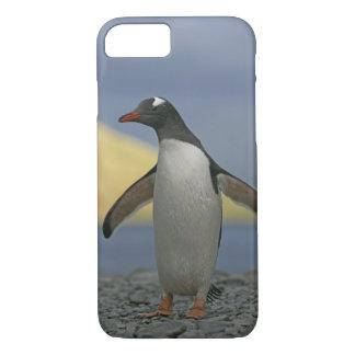 Coque iPhone 8/7 Océan Atlantique sud, île du sud de la Géorgie,