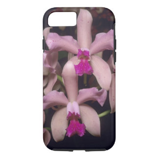 Coque iPhone 8/7 Orchidée, (amethystoglossa de Cattleya), orientale