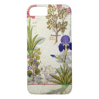 Coque iPhone 8/7 Orchidée et Fumitory ou Hedera et iris de