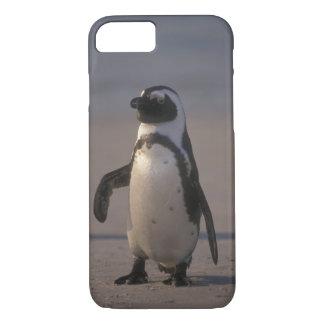 Coque iPhone 8/7 OU Jacka d'africano de Pinguim (le demersus font