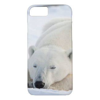 Coque iPhone 8/7 Ours blanc en hiver