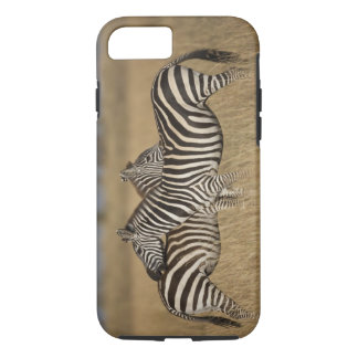 Coque iPhone 8/7 Paires de zèbre de plaines (quagga d'Equus) se