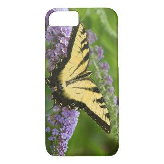 Coque iPhone 8/7 Papillon oriental de machaon de tigre