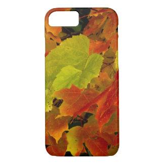 Coque iPhone 8/7 Parc d'état d'Itasca, couleurs d'automne