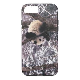 Coque iPhone 8/7 Petit animal de panda jouant sur l'arbre couvert