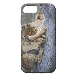 Coque iPhone 8/7 Petits animaux de lion jouant sur le rondin,
