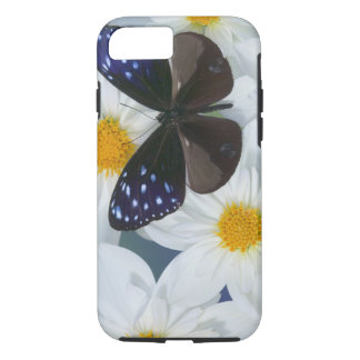 Coque iPhone 8/7 Photographie de Sammamish Washington du papillon