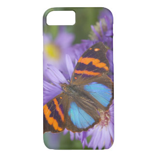 Coque iPhone 8/7 Photographie de Sammamish Washington du papillon