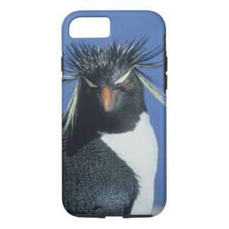 Coque iPhone 8/7 Pingouin de Rockhopper (chrysocome d'Eudyptes)