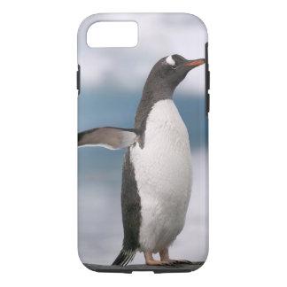 Coque iPhone 8/7 Pingouins de Gentoo sur le rivage rocheux avec le