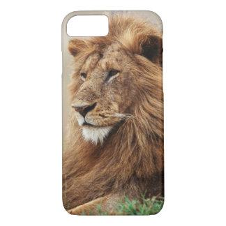 Coque iPhone 8/7 Plan rapproché du lion masculin
