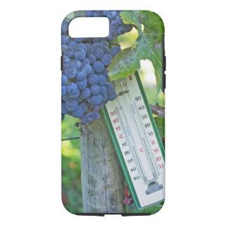 Coque iPhone 8/7 Raisins merlot à la La Figeac grave, a de château