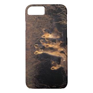 Coque iPhone 8/7 renard rouge, vulpes de Vulpes, kits sur leur