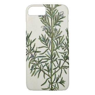 """Coque iPhone 8/7 Rosmarinus Officinalis, """"d'un de fines herbes"""