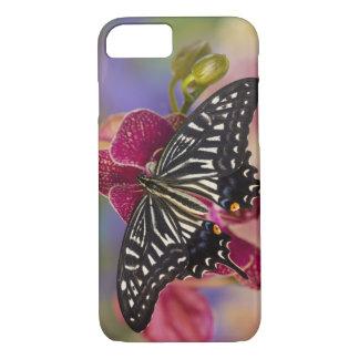 Coque iPhone 8/7 Sammamish, papillon tropical 3 de Washington