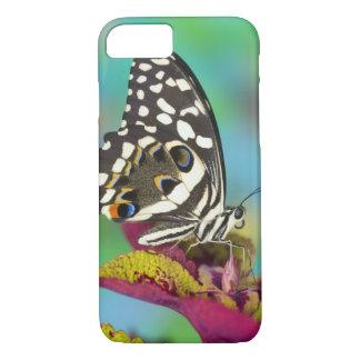 Coque iPhone 8/7 Sammamish, papillon tropical 5 de Washington