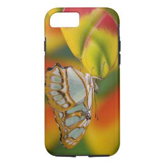Coque iPhone 8/7 Sammamish, papillon tropical 7 de Washington