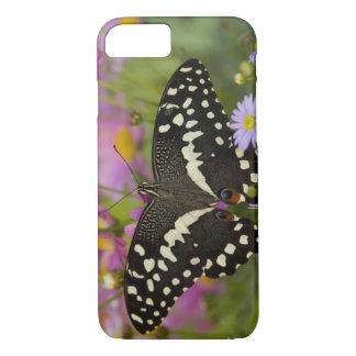 Coque iPhone 8/7 Sammamish, papillon tropical 8 de Washington