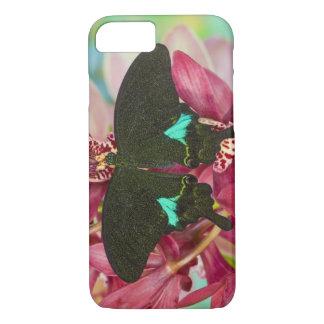 Coque iPhone 8/7 Sammamish, papillon tropical 9 de Washington