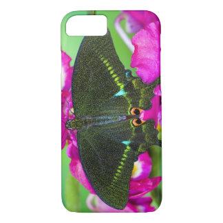 Coque iPhone 8/7 Sammamish, papillon tropical de Washington