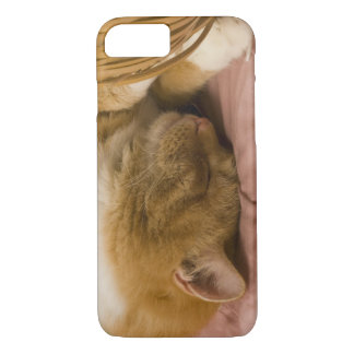 Coque iPhone 8/7 Sommeil orange de chat tigré