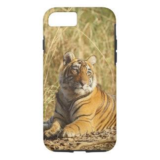 Coque iPhone 8/7 Tigre de Bengale royal en dehors de la prairie,