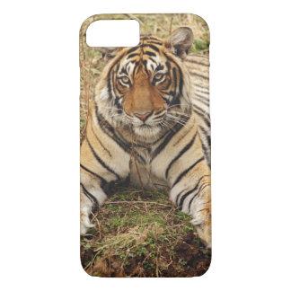 Coque iPhone 8/7 Tigre de Bengale royal, parc national de