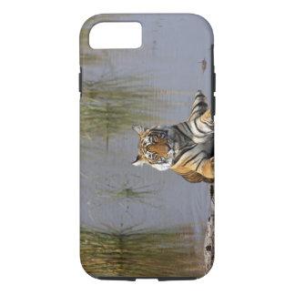 Coque iPhone 8/7 Tigre de Bengale royal se reposant dans le lac