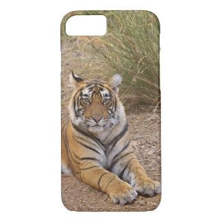 Coque iPhone 8/7 Tigre de Bengale royal se reposant en dehors de la