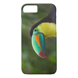 Coque iPhone 8/7 toucan Quille-affiché sur la branche d'arbre,
