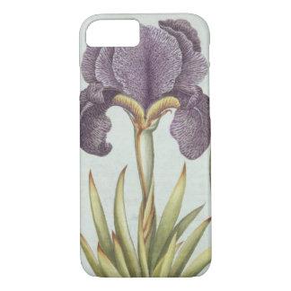 Coque iPhone 8/7 Trois variétés d'iris imberbes de Rhizomatous