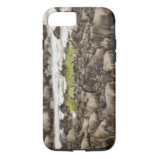 Coque iPhone 8/7 Troupeau massif de gnou pendant la migration,