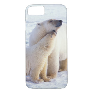 Coque iPhone 8/7 Truie d'ours blanc avec l'petit animal, banquise
