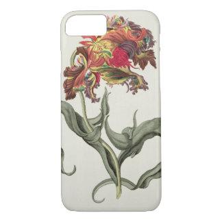 Coque iPhone 8/7 Tulipa Monstrosa Rubra Maior de 'Phythanthoza IC