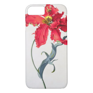 Coque iPhone 8/7 Tulipe : Fard à joues de Perroquet