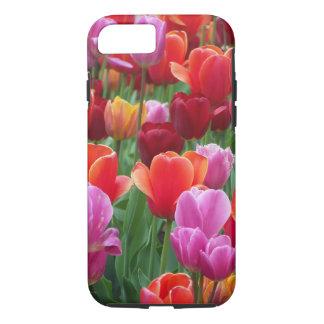 Coque iPhone 8/7 Tulipes colorées