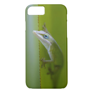 Coque iPhone 8/7 Un anole vert est un lézard arborescent