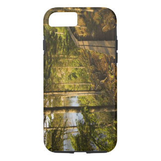 Coque iPhone 8/7 Un passage couvert en bois en parc national Maine