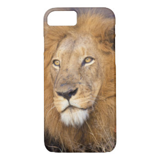 Coque iPhone 8/7 Un portrait d'un lion examinant la distance