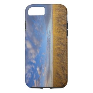 Coque iPhone 8/7 Wheatgrass et cieux dramatiques au lac Freezeout