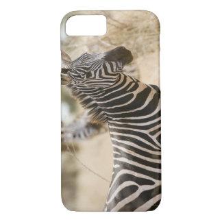 Coque iPhone 8/7 Zèbre au parc national de Meru, Kenya