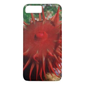 Coque iPhone 8 Plus/7 Plus Anémone de la Mer Rouge dans la piscine