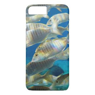 Coque iPhone 8 Plus/7 Plus Aquarium en monde marin d'Ushaka, Durban