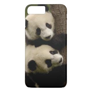 Coque iPhone 8 Plus/7 Plus Bébés de panda géant (melanoleuca d'Ailuropoda) 2
