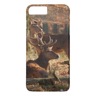 Coque iPhone 8 Plus/7 Plus Cerfs communs rouges dans le bois automnal