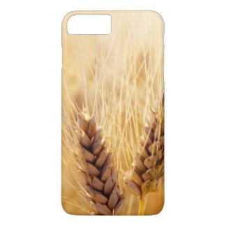 Coque iPhone 8 Plus/7 Plus Champ de blé
